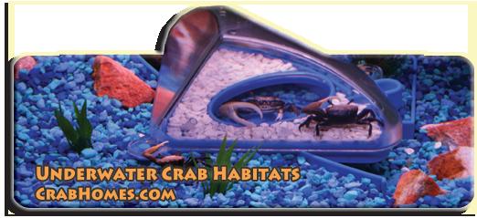 Crab Habitat